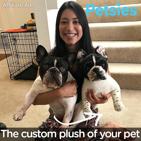 Get a Custom Plush of Your Dog