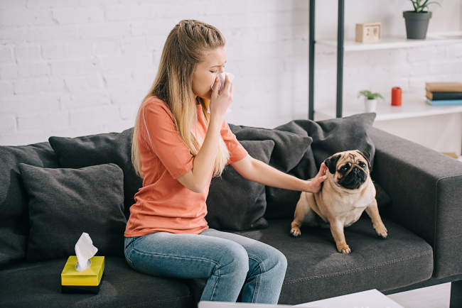 Lady Sitting with Pug Dog