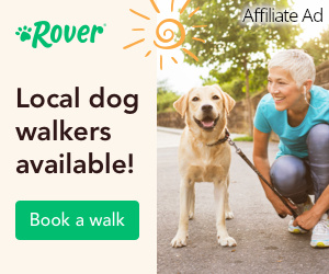 Rover Dog Walkers